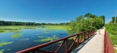 You can experience the best of Minnesota nature by hiking, biking, horseback riding, or even snowmobiling on these trails.