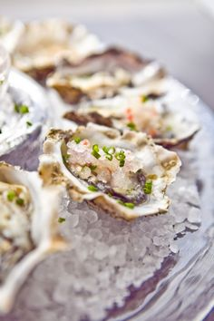 how to shuck an oyster... something every Floridian should know how to do (shame on you if you don't!) and everyone else should aspire to learn