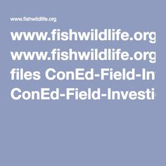 www.fishwildlife.org files ConEd-Field-Investigations-Guide.pdf
