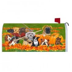 Magnetic Mailbox Cover   Furry Friends. Magnetic Mailbox CoversGarden Flags FurryGadgets