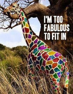 Too fab! I do love color!!!