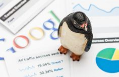 How to Recover from Google Penguin and Get Back on Track