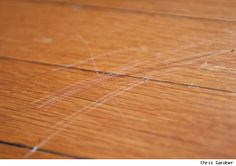 5 DIY Ways to Repair Scratches in Hardwood Floors - guess who did the first damage to our beautiful main room floors. (Hint: it wasn't my husband...:)
