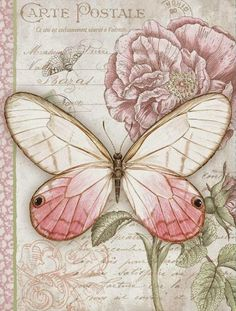 More Pretty Pink Illustration Art at: http://www.pinterest.com/oddsouldesigns/illustrate-the-rainbow-pinks/ #butterfly #journal
