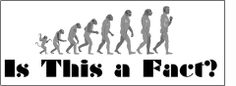 Evolution vs creationism essay about god Creationism is the theory that God created the. This opinion is one of many who have debated creation vs, evolution. Dark Energy, 6th Grade Science, Intelligent Design, Scientific Method, Dark Matter, Science Lessons, Atheist, Big Bang Theory, Science And Nature
