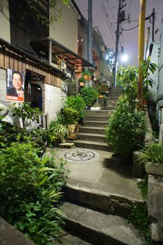 夜散歩のススメ「植栽階段」東京都港区