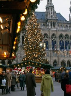 Vienna Christmas Market                                                                                                                                                                                 More