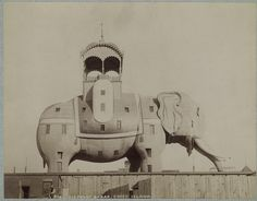"The Coney Island Elephant was a hotel and brothel built in the shape of an elephant, and located on Coney Island. In 1885, the Elephant Hotel, also known as the Elephantine Colossus, was built by James V. Lafferty and was 122 feet high with seven floors and had 31 rooms. The hotel became associated with prostitution. This lead to the phrase ""going to see the elephant"" being created, to mean going to see a prostitute."