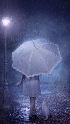 A Wet White Night. A girl in white with her white umbrella and her white kitten in the white misty light. White Umbrella, Rain Umbrella, Under My Umbrella, Walking In The Rain, Singing In The Rain, Rainy Night, Rainy Days, Night Time, I Love Rain