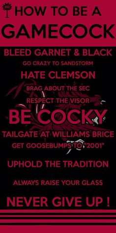 Be a fan of gamecocks Carolina Gamecocks Football, Gamecock Nation, Go Gamecocks, Nebraska Football, College Football Teams, Clemson, Miss South Carolina, University Of South Carolina, Usc Columbia