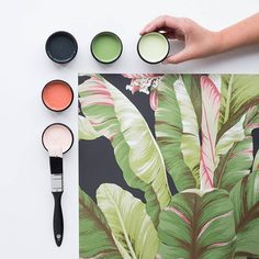 Should we go pinks or greens with this print? Testpots from bottom left in Resene Sakura, Resene Apple Blossom, Resene Cod Grey, Resene Dingley, and Resene Caper. Banana Leaf Palms wallpaper by Ashford Tropics, available from Resene ColorShops. #Resene #Resenewallpapers #pinkorgreen?