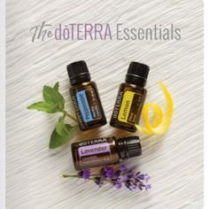 Can you make money selling essential oils? Learn how to sell doterra and become a doterra wellness advocate. doTERRA business building tips. Wild Orange Essential Oil, Doterra Essential Oils, Melaleuca, Castor Oil Uses, Doterra Wellness Advocate, Holistic Wellness, Purifier, Healing Oils, Natural Remedies