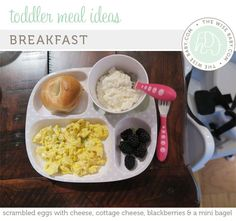 Easy toddler meal ideas that can be made in 10 minutes or less + tips for getting a picky eater to EAT!