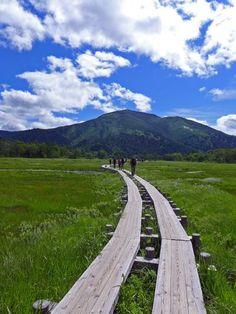 2013年夏の尾瀬にハイキング