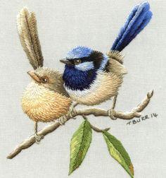 Wren birds needlepainting