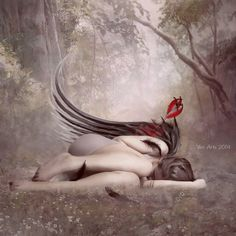 Fallen angel on the ground Angel Images, Angel Pictures, Fairy Pictures, Gothic Angel, Gothic Art, Fantasy Kunst, Fantasy Art, Dragon Tatoo, Sad Angel