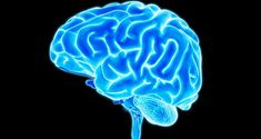 50 Interesting Facts about Human Brain | Fact Republic