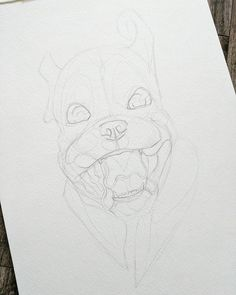 Using my husband's photo of my brother's puppy as reference for this one... Look at that face! How could I resist? #boxer #puppy #dog #family #pet #portrait #wip #process #reach #art #illustration #painting #drawing #graphite #watercolour #aquarelle #expression #catgraff