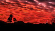 https://flic.kr/p/QVfed7 | Fiery Sunrise | This is the morning view of the Gila Mountains from the Foothill, Arizona which is a few miles from Yuma.  It seems like we have many sunrises like this one during the winter months.  The Gila Mountains of Yuma County are a 26-mile (42 km) long mountain range in southwestern Arizona in the northwest Sonoran Desert.  The Gila Mountains of Yuma County are a northwest-southeast trending mountain system. The fault-blocked mountain range is attached on…