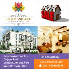 Search for flats for sale in sarjapur road. 2 and 3 BHK Premium Apartments in Sarjapur road.Location: Walk from Wipro Corporate Office, Sarjapur Road, Bangalore Flats For Sale, Lotus, Palace, Apartments, Relax, Lotus Flower, Keep Calm, Palaces, Mansion