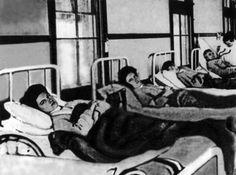 Typhoid Mary in quarantine