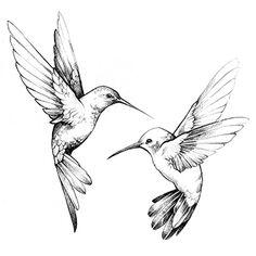 Anne De Angelis Illustration Tattoo Hummingbird, Hummingbird Drawing, Hummingbird Food, Bird Tattoo Back, Deer Tattoo, Raven Tattoo, Arm Tattoo, Two Birds Tattoo, Flying Tattoo