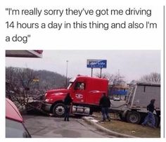 """I'm really sorry, they got me driving 14 hours a day in this thing and also I'm a dog - iFunny :) Memes Humor, Funny Car Memes, Funny Animal Memes, Funny Games, Funny Animals, Dog Memes, Animal Funnies, Car Jokes, Ironic Memes"