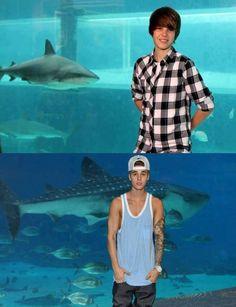 Looks like yesterday :')I hate sharks tho...