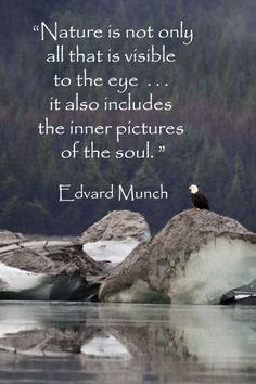 """""""Nature is not only all that is visible to the eye . . . it also includes the inner pictures of the soul."""" – Edvard Munch – Eagle and glacier image taken by F. McGinn at Mendenhall Glacier near Juneau, Alaska."""