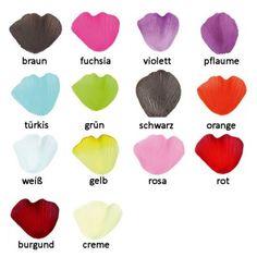 Rosenblüten - verschiedene Farben