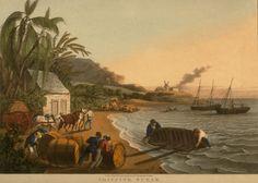 Shipping Sugar, Antigua, West Indies, 1823