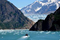 Tracy Arm Alaska - Bing images