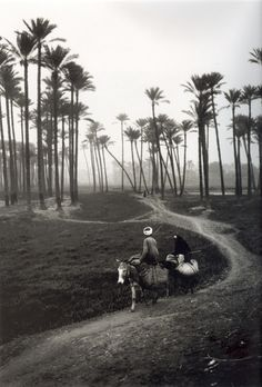 :::: ✿⊱╮☼ ☾ PINTEREST.COM christiancross ☀❤•♥•* :::: Coming home from field work, Nile Delta, Egypt, n.d.