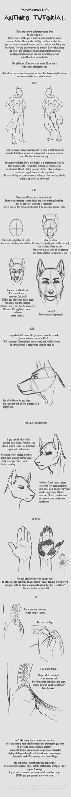 ANTHRO TUTORIAL by Delta141.deviantart.com on @deviantART