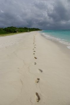 My goal? My footprints....here.....in the sand.