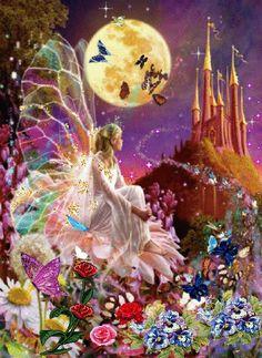 Ange Papillon Multicolore