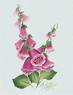Flower A to Z with Donna Dewberry - Vania Montes - Álbumes web de Picasa One Stroke Painting, Tole Painting, Fabric Painting, Botanical Drawings, Botanical Prints, Donna Dewberry Painting, Homemade Face Paints, Hand Painted Fabric, Arte Country