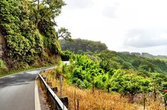 If you are ever in Maui, don't miss out on this excursion to Hana.  The drive reveals hairpin turns, 1 lane bridges and many beautiful waterfalls.  I've personally drove this route over 60 times, when I was a tourguide, while living on Maui.    Photo Tour of the Road to Hana  - Maui