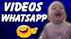 VIDEOS PARA WHATSAPP - Videos de Whatsapp Engraçados - Top Videos Whatsa...