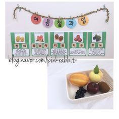 [과학 - 여름] 여름철 과일 (2가지 ver.) : 네이버 블로그