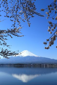 the view of home from my parents house! Monte Fuji Japon, Fuji Mountain, Nature Photography, Travel Photography, Mont Fuji, Japanese Landscape, Nature Pictures, Japan Travel, Amazing Nature