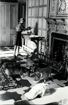 Queen and her corgis