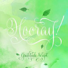 Gratitude Script by Sudtipos