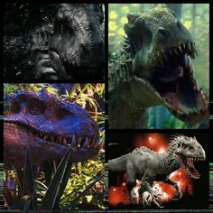 Jurassic World- Genome of Indominus Rex  • Tyrannosaurus Rex- Base genome of Indominus to give it bulk and powerful jaws. • Velociraptor- intelligence and brain cavity • Therizinosaurus- long claws • Abeliosaurs- horns (Carnotaurus) and osteoderms on body • Gigantosaurus- 20' high, 50' long • Pit Adder- 90 degree jaws and infrared vision • Cuttlefish- chromatophores for camouflage  • Tree Frog- Thermoregulation