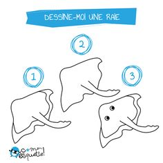 1000 images about dessine moi on pinterest animaux and forts - Dessin raie manta ...