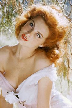 What do people think of Tina Louise? See opinions and rankings about Tina Louise across various lists and topics. Tina Louise, Vintage Hollywood, Hollywood Glamour, Hollywood Icons, Ginger Grant, Gorgeous Redhead, Beautiful Red Hair, Beautiful Women, Ann Margret