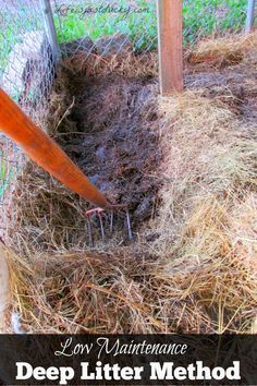 The Deep Litter Method is a way to keep your duck and chicken coop run clean and healthy for your flock. Control the flies and keep your eggs clean. Plus it is much less work! It makes great compost f (Chicken Coop Hacks) Chicken Coop Run, Portable Chicken Coop, Chicken Pen, Backyard Chicken Coops, Building A Chicken Coop, Chicken Feeders, Chicken Lady, City Chicken, Chicken Toys