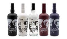 Wenn steirische Handwerkskunst auf exotische Rohstoffe trifft, dann entsteht der Ron Johan Rum. Ron steht für den karibischen Part, das ungestüme, leidenschaftliche und Johan für Erzherzog Johann von Österreich (1782 – 1859), den bedeutenden Modernisierer, der die Steiermark liebte. Gin, Vodka Bottle, Whiskey, David, Drinks, Exotic, Products