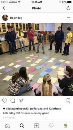 Feline disease memory on the classroom floor. Great way to get the students moving and participating. Colquitt Co. FFA - www.OneLessThing.net