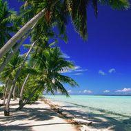 Destination Weddings: Marrying in Hawaii